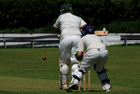County Cricket Action